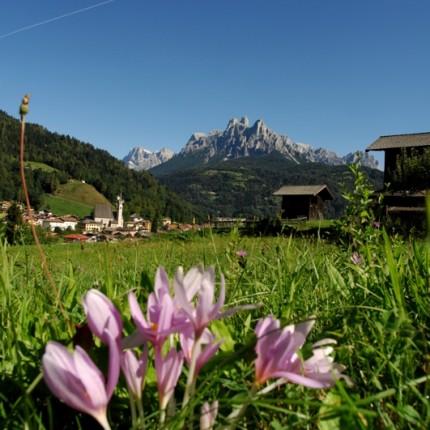 Percorso Prati del Navoi - Hotel Isolabella Primiero - Trentino