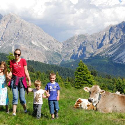 vacanze estive in montagna - Hotel Isolabella Primiero - Trentino