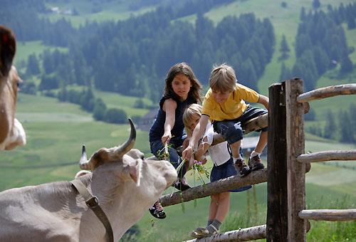 Vacanza per la famiglia in Trentino