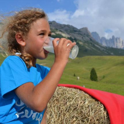 vacanza con bambini gratis in Trentino