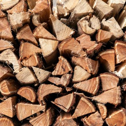 Cataste di legna - Primiero - Trentino