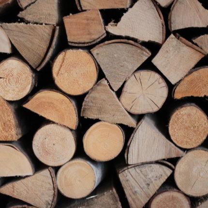 cataste di legna - Hotel Isolabella - Trentino