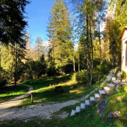 Sentiero Madonna del Sass, Primiero